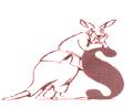 Abbildung Judosafari
